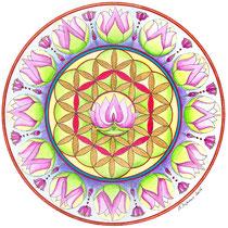 Lotus fleur de vie (aquarelle sur papier 300gr, non encadré  25x25cm - 60€) - © B. Dupuis