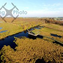 Luftbild - Das Aschhorner Moor