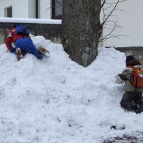 SchneebergWühlen