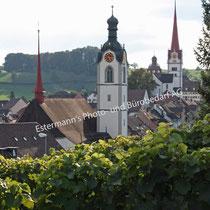 Beromünster Kirchen St. Stephan und St. Michael