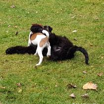 Aurélie mit Freund Hugo