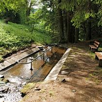 Kneippanlage nähe 94379 St. Englmar - Klinglbach (Bild: Franz Xaver Six)- Flyer