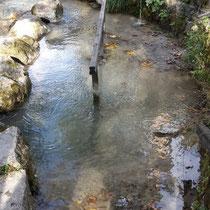 Wassertretbecke in 82467 Garmisch-Partenkirchen - im Michael Ende Kurpark