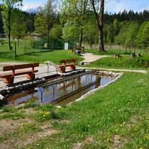 Wassertretanlage in 83483 Bischofswiesen - Aschauerweiherstraße 56 (Foto: Tourist-Information Bischofswiesen -Michael Obraczka)
