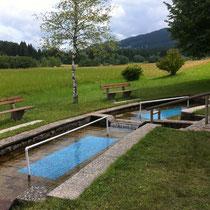 Kneippanlage in 87642 Trauchgau - Wanderweg zur Almstube  (Ostallgäu) (Foto: Touristinfo Halblech