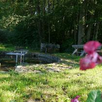 Kneippanlage in 94577 Winzer- Nesselbach (Foto: LRA Deggendorf)