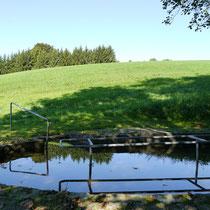 Wassertretbecken in 94557 Winzer- Nesselbach (Foto: LRA Deggendorf)