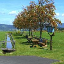 Kneippanlage in 94145 Haidmühle- Bischofsreut-Langenreut  (Bild: Touristinfo Haidmühle)