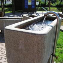 Armbad in 91438 Bad Windsheim - im Kurpark - Erkenbrechtallee (Foto: Franken Therme Bad Windsheim)