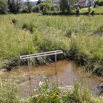 Wassertreten in 93444 Bad Kötzting- Dampfbachsee (Foto: Stephan Pinzl)