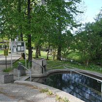 Wassertretbecken in 83229 Aschau im Kurpark (Foto: Touristinfo Aschau)