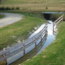 Wassertreten in 94145 Haidmühle - Jogl-Kneippanlage am Mirasatbach (Wanderweg nach Frauenberg) (Bild: Touristinfo Haidmühle)