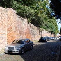 hinter der Bardowicker Mauer