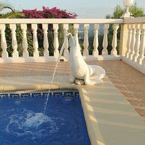 Seehund am Pool der Villa Gandia Hills, Ferienwohnung Valencia, 11/11