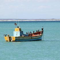 Struis Bay