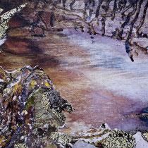 Lichens #5, 2021. Oeuvre originale 60x80cm + tirages numérotés 1-24 + 2 e.a