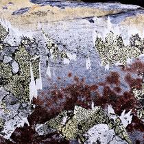 Lichens #3, 2021. Oeuvre originale 60x80cm + tirages numérotés 1-24 + 2 e.a