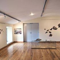 LICHENS, Exposition personnelle, Maison du Mont Aigoual, Parc National des Cévennes, 2021.