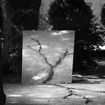 RE-GÉNÉRATION, 2021. Photographie au miroir Olli Berry