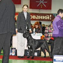 хендлер Тула  Гладышева Юлия