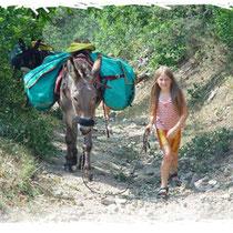Plusieurs adresses pour se promener avec des ânes.