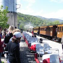 Le choix entre les voitures à pédales ou le train vapeur.