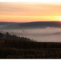 Mussy sur seine (partie sud) et la vallée de la Seine sous la brume matinale d'octobre 2008