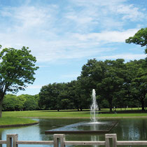 This spacious beautiful park has a central square with lawn, fountains and bird sanctuaries.