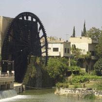 Norias en Hama (Siria) a orillas del río Orontes