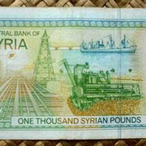 Siria 1000 libras 1997 reverso