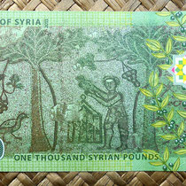 Siria 1000 libras 2013 reverso