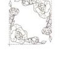 Afbeelding 12