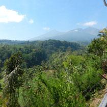 Le Mont Rinjani... vu d'en bas!