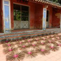 Encens devant la pagoda