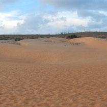 Coucher de soleil sur les dunes de sable rouges