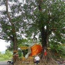 Un buddha au bord de la route