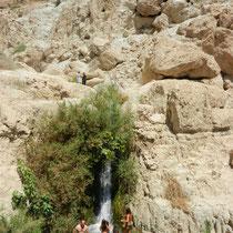 Cascades de l'oasis d'En Gedi