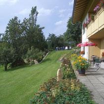 Blick von der Terrasse auf die Blumen (Rosen), Liegewiese und die Obstbäume