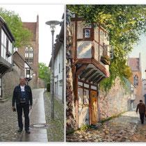 Mur w Neubrandenburgu, Stadtmauer und die Wiekhäuser in Neubrandenburg.