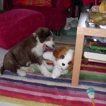 Als der Hund von meinem Papa starb hab ich dieses Stofftierchen bekommen als trost, ich habe sie auch Arka genannt :D