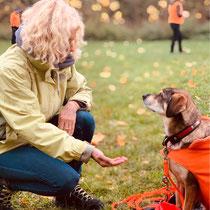 Ein Hund, der sich an Dir orientiert ist entspannter und stürzt sich nicht sofort auf das Futter in der Hand.