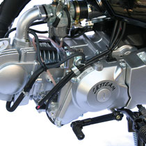 Skyteam T-Rex 125 Motor