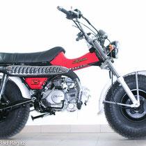 Skyteam T-Rex 125 rot mit schwarzen Felgen