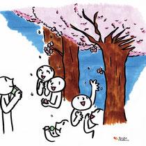 春は桜の季節。今年は早かったですね。