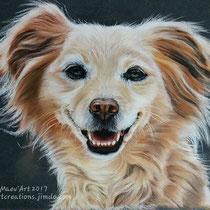 Portrait de chien beige