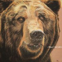 """Grizzly - D'après une photo de """"windfuchs"""" sur Deviantart, avec son autorisation."""