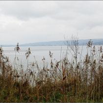 Ein Blick auf den See.
