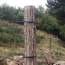 CClôture High Tensile, piquets fer et acacia, 2 fils électriques 2,5 mm