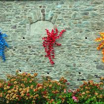 Heike Lunkwitz: Mauerblümchen