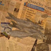 Fish and (no) chi, 50 x 50 cm ps